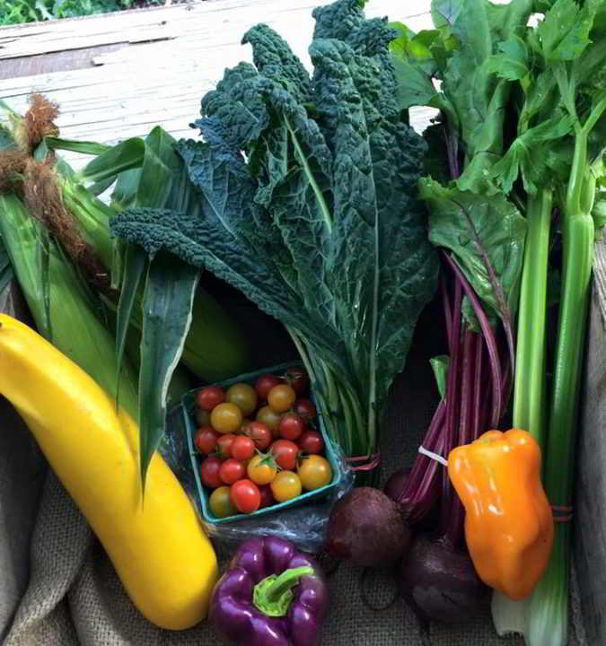 Gabriola Food Hub Summer Box Program filled with seasonal vegetables