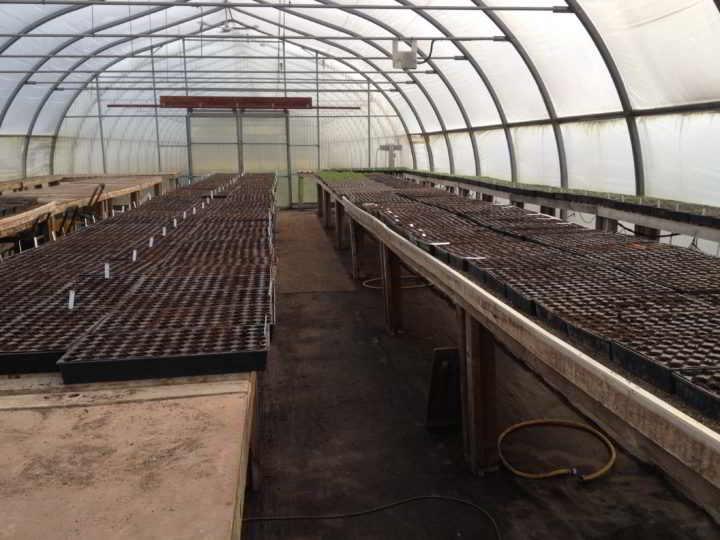 Farm Job Pattison Farms