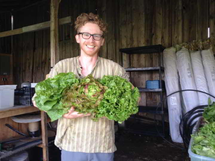Internship Blue Wheelbarrow Farm - Aaron Armstrong