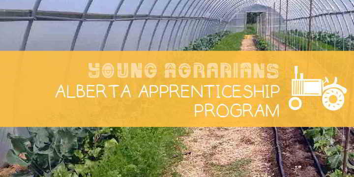 Apprenticeship-Young-Agrarians-Sand-Springs