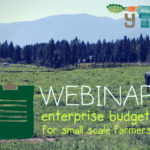 APRIL 12: Enterprise Budgets for Small Scale Farmers Webinar