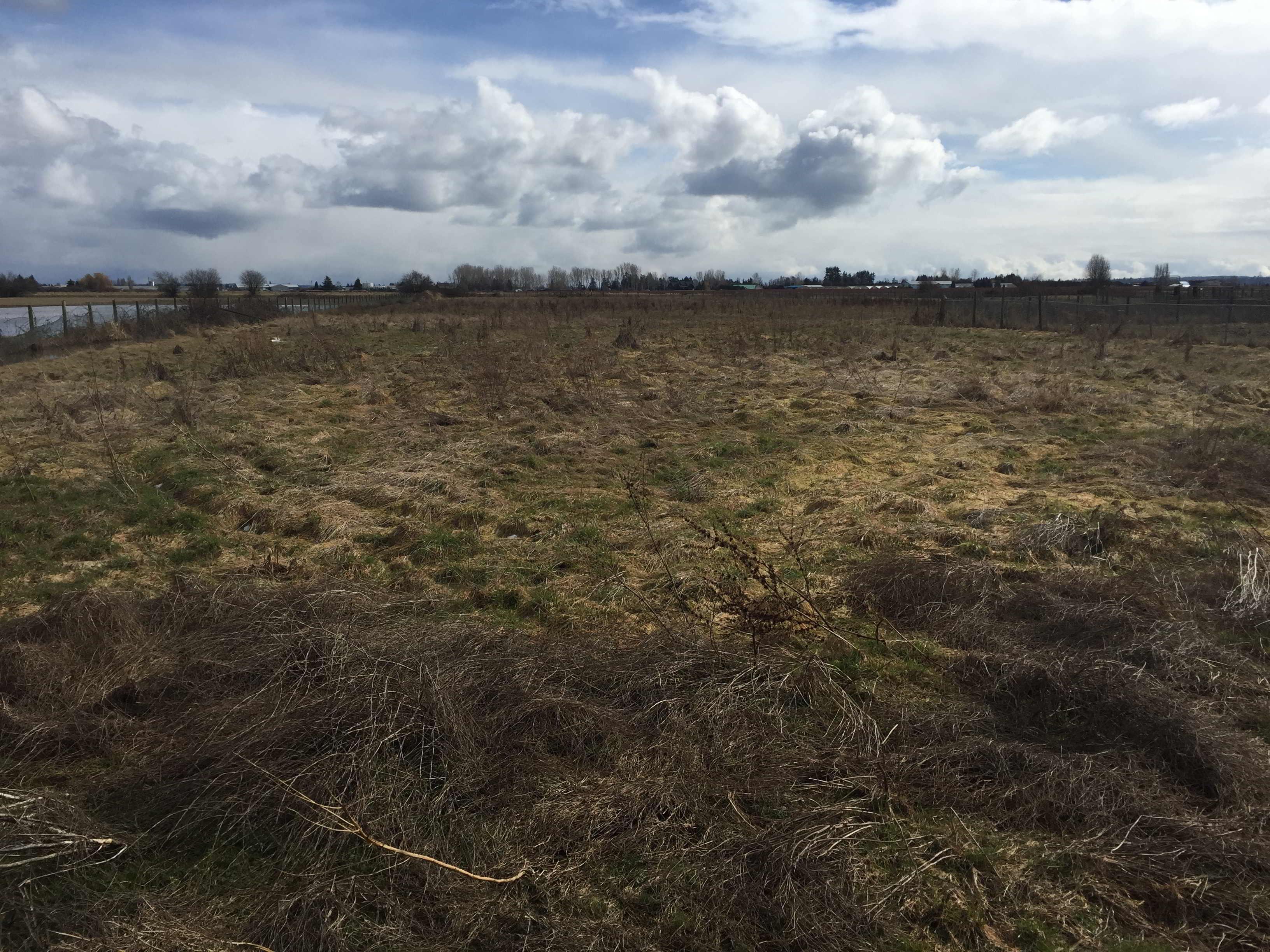 3.5 acres in delta