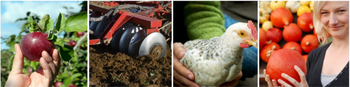Enterprise Budgets Kwantlen Polytechnic University Institute for Sustainable Food Systems