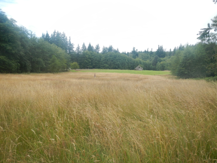 New Farmers Dane and Rachael's Farm Land