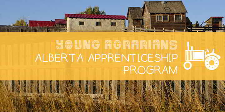 Apprenticeship-Young-Agrarians-Blue-Mountain-Biodynamic