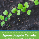 Agroecology in Canada: Food Sovereignty in Action—National Farmers Union
