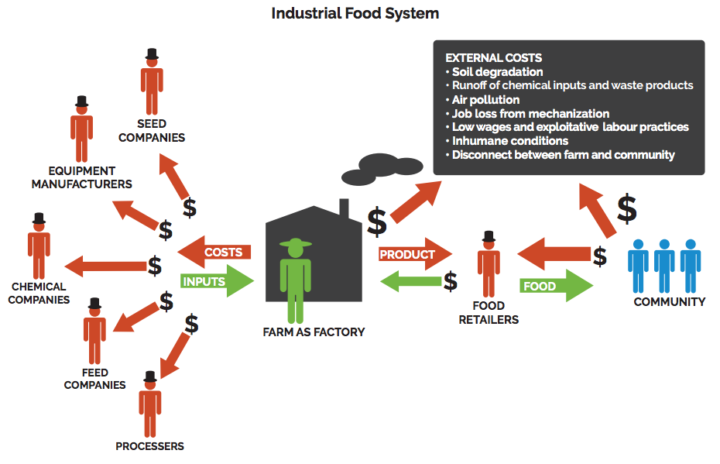 Agroecology in action: Industrial Food System