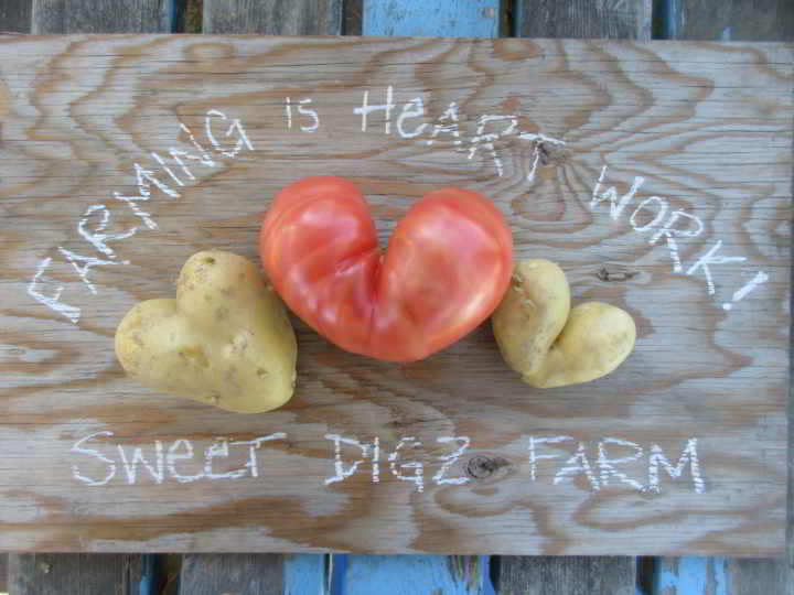 Farming is heart work expressed with heart shaped vegetables