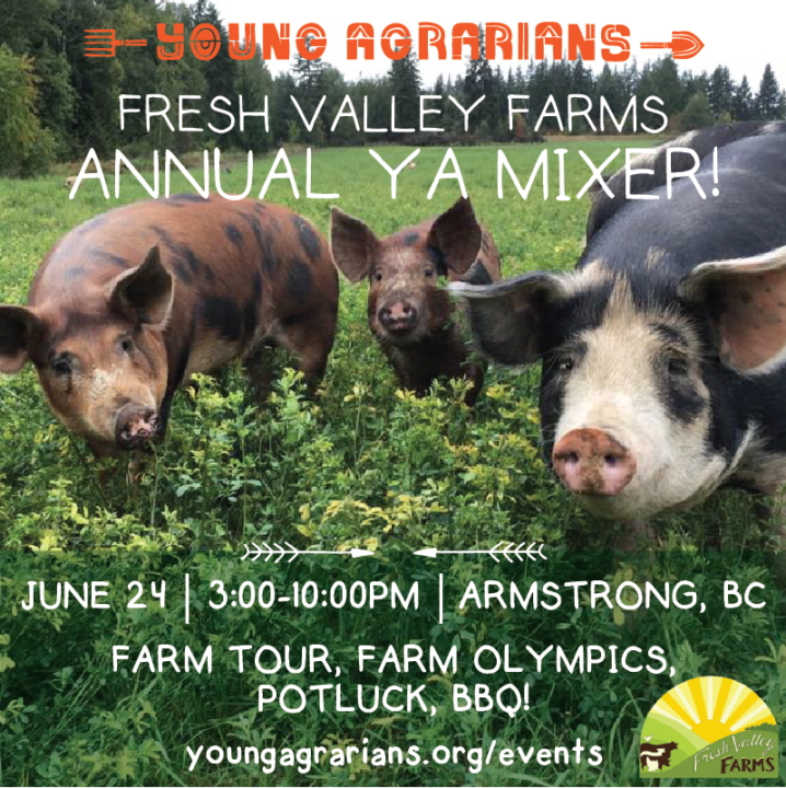 Fresh Valley Farms Annual YA Mixer