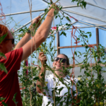 FARM JOB: AGASSIZ, BC – Earthwise Society Farm & Projects Coordinator