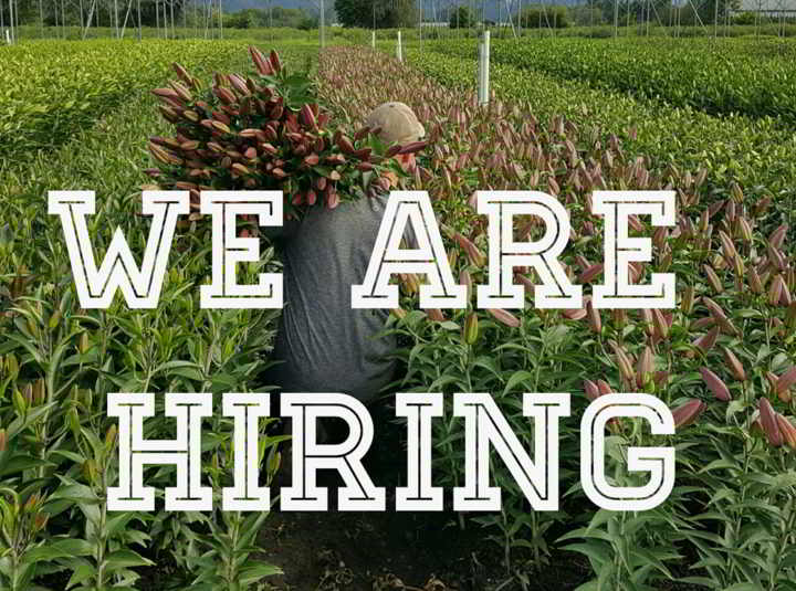 Blue Magic Greenhouses is hiring