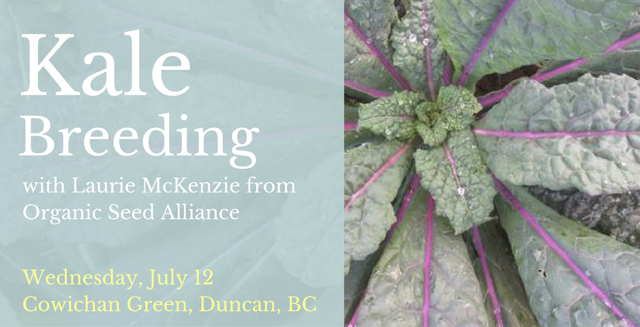 Kale breeding workshop