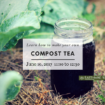June 10: DELTA, BC – Compost Tea Workshop, Earthwise Society