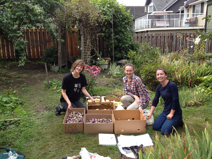 Vancouver Fruit Tree Project