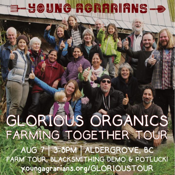 Glorious Organics