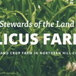 APPRENTICESHIPS: Havre, MT – Vilicus Farms