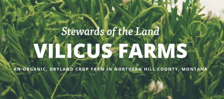 vilicus-farm-apprenticeship