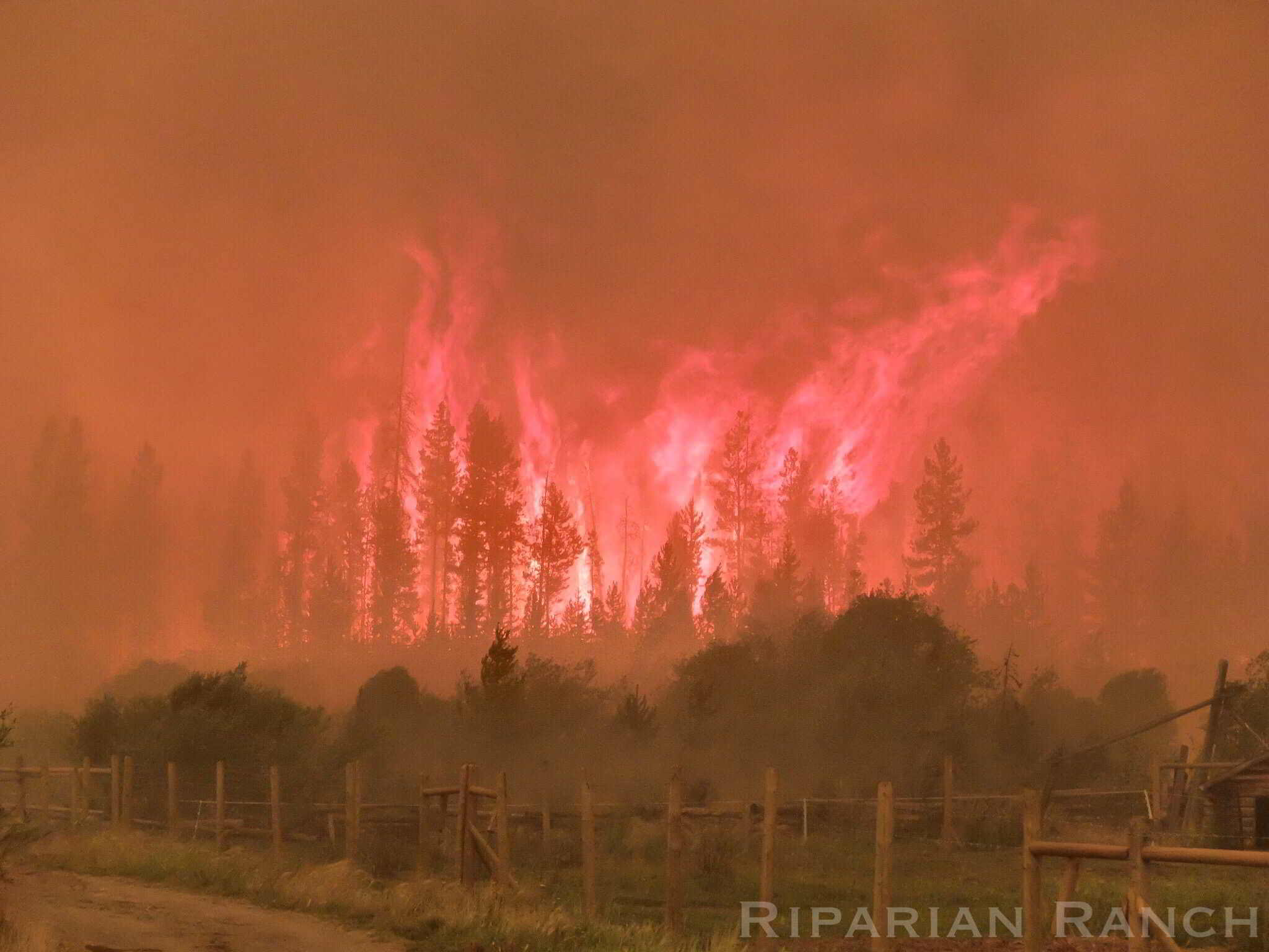 BC Wildfire at Riparian Ranch