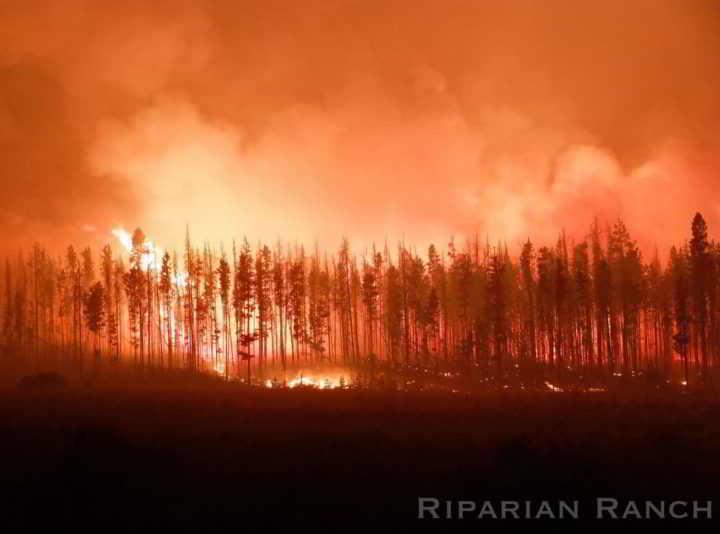 BC Wildfire at Riparian Ranch