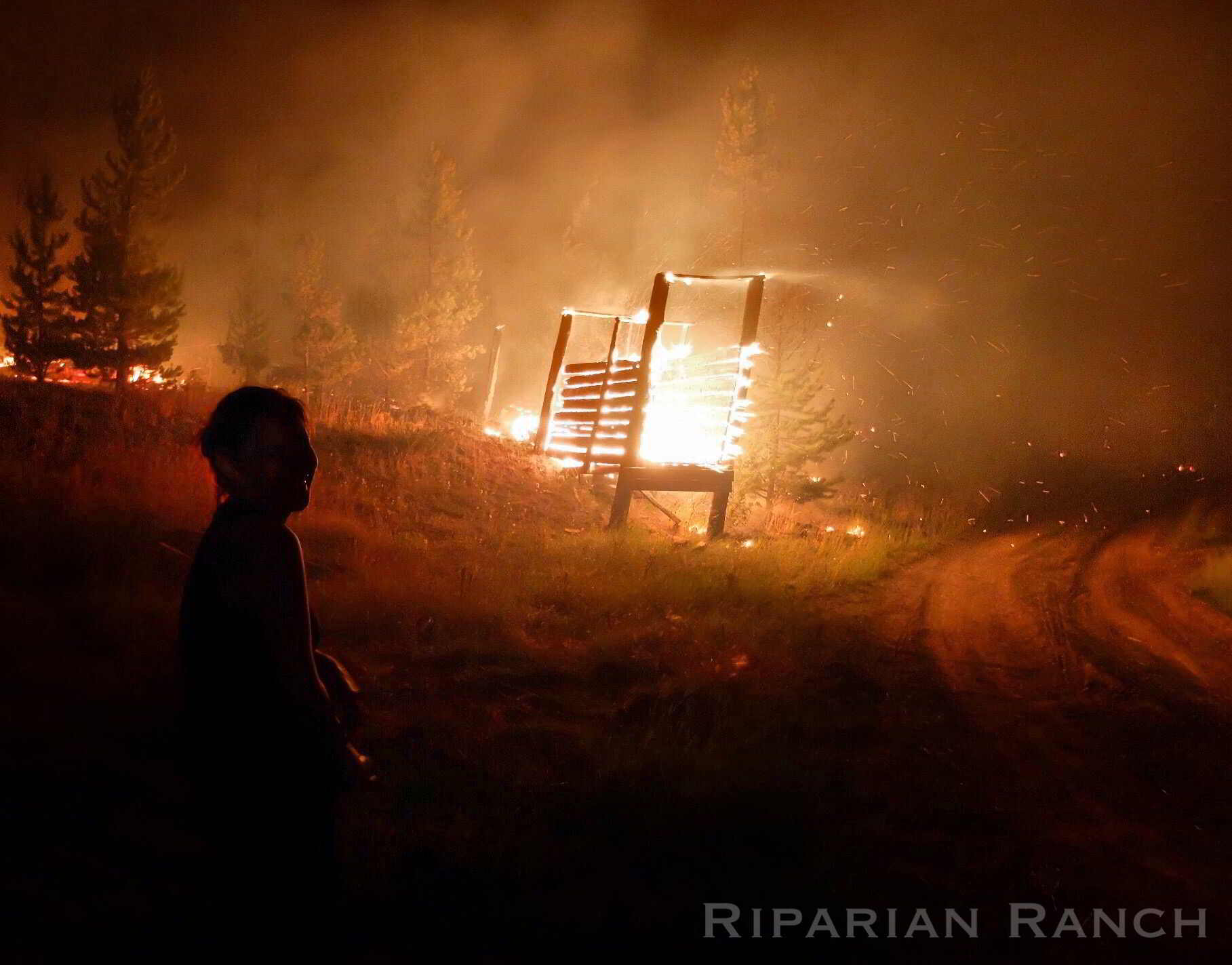 Woman looks at field with burning fences