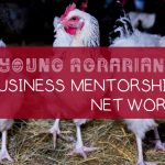 2018 BC BUSINESS MENTORSHIP NETWORK – APPLY!