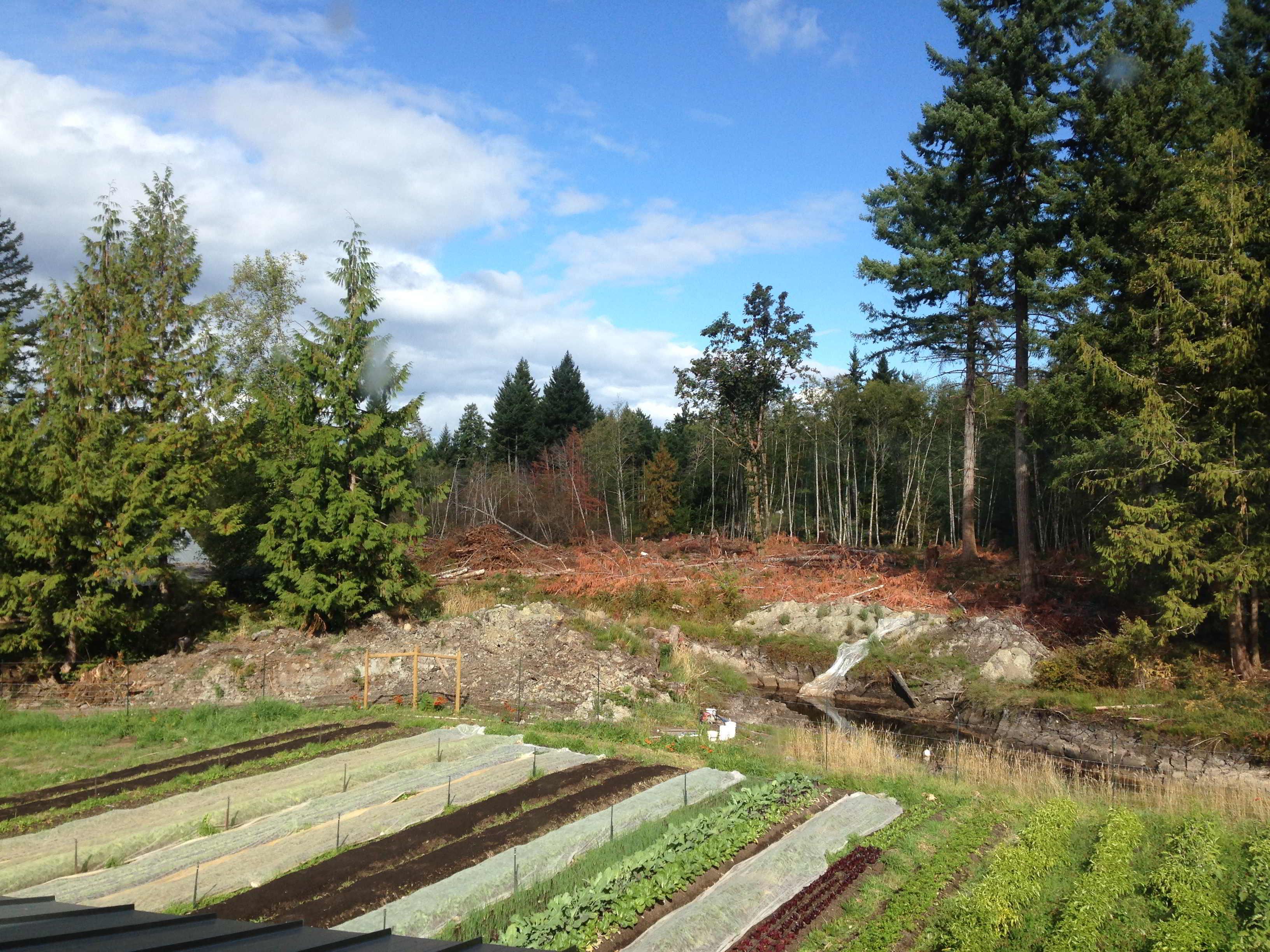 Two Roads Farm Market Garden 1