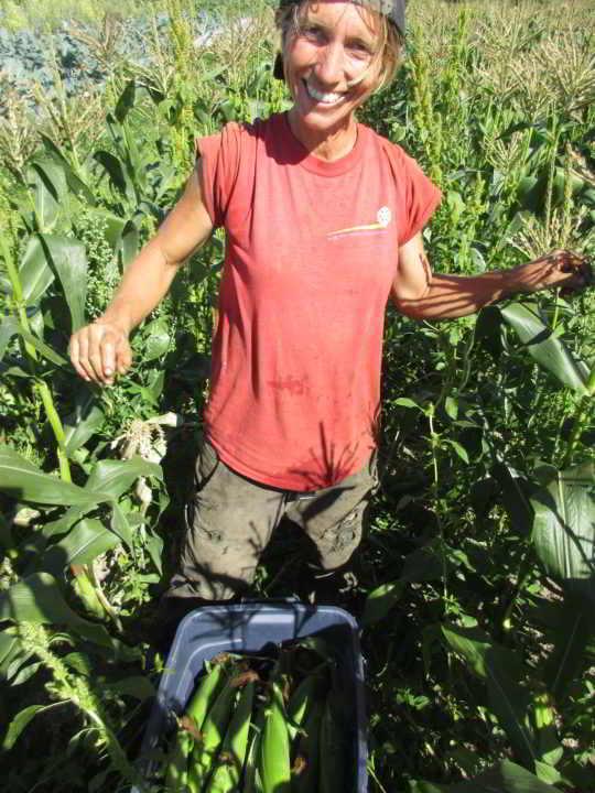 Sweet Digz Farmer Kareno
