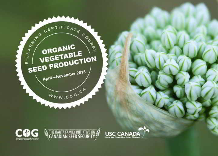 seed-production-course