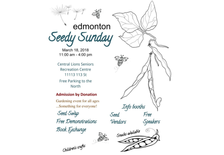 seedy-sunday-edmonton