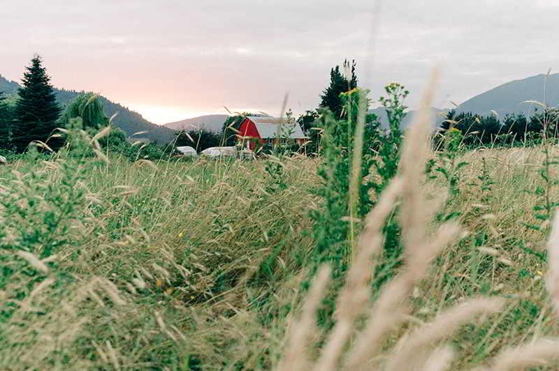 Field House Farms