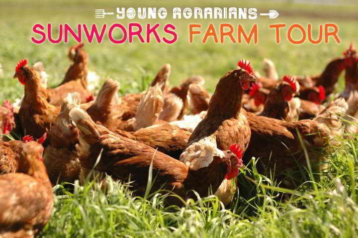sunworks-farm-tour