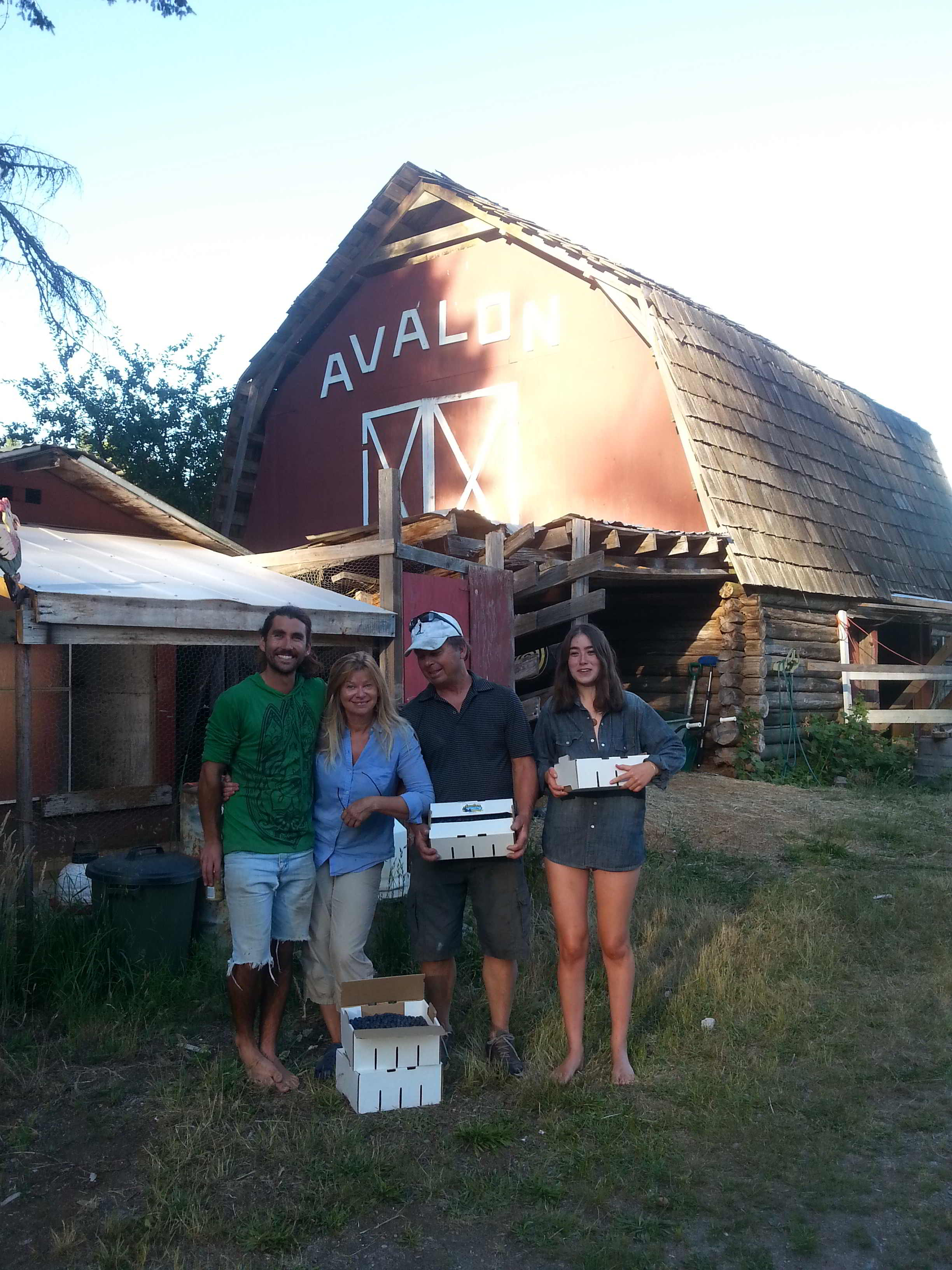 Avalon Organic Blueberry Farm - farm crew