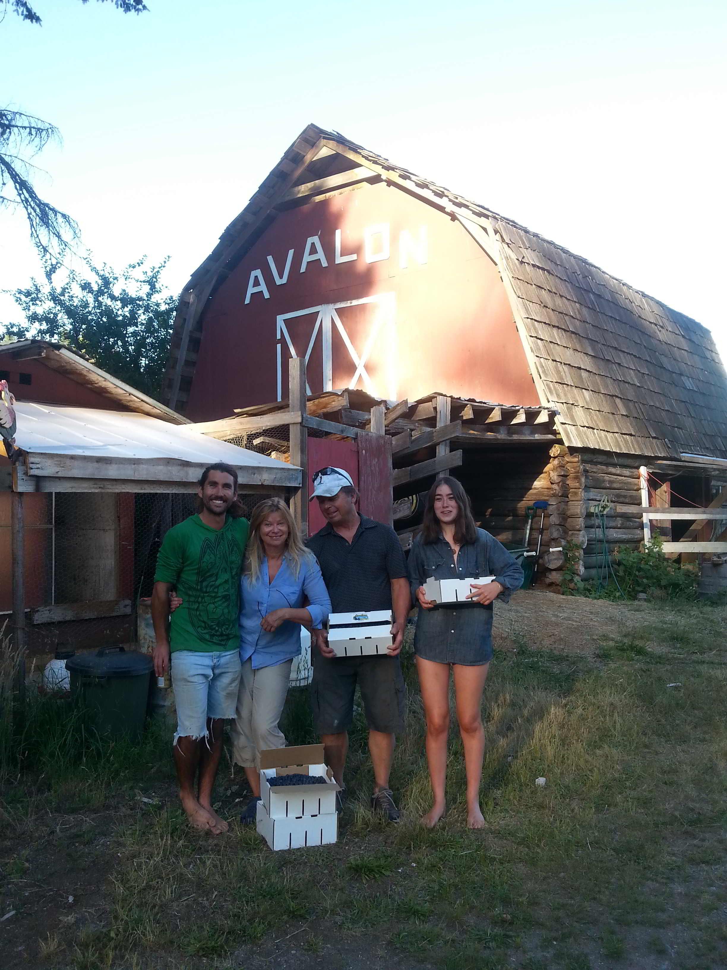 Avalon Organic Blueberry Farm - farm crew