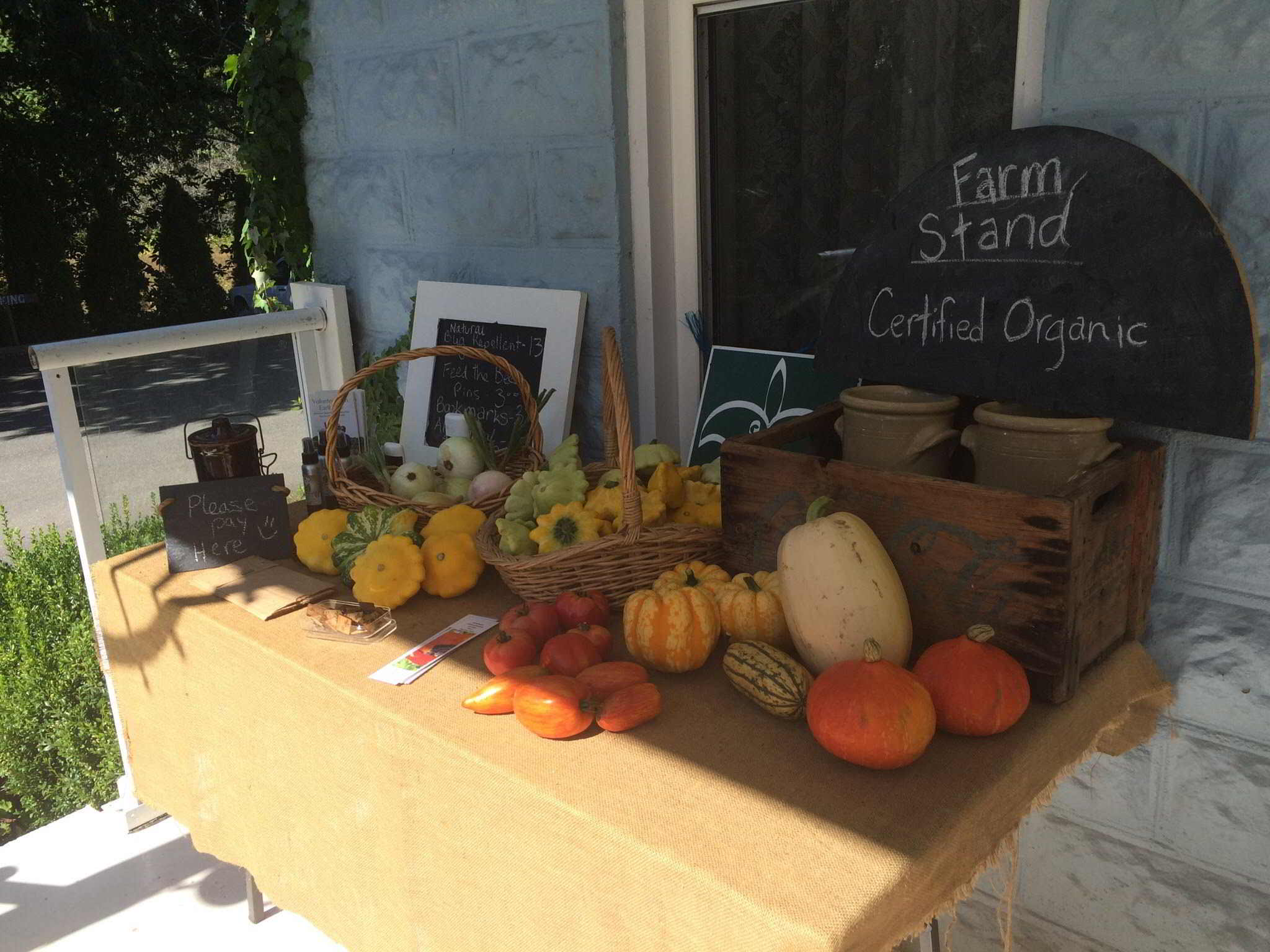 Earthwise Society Farm in Agassiz - farm market