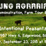 SEPT 23: EDGEWOOD, BC –  Intentional Peasants Horse Plough Demo & Potluck Social!