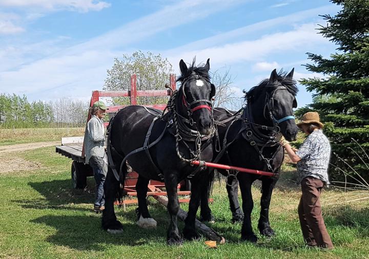 Young-Agrarians-Wildwood-Farm-Tour-1