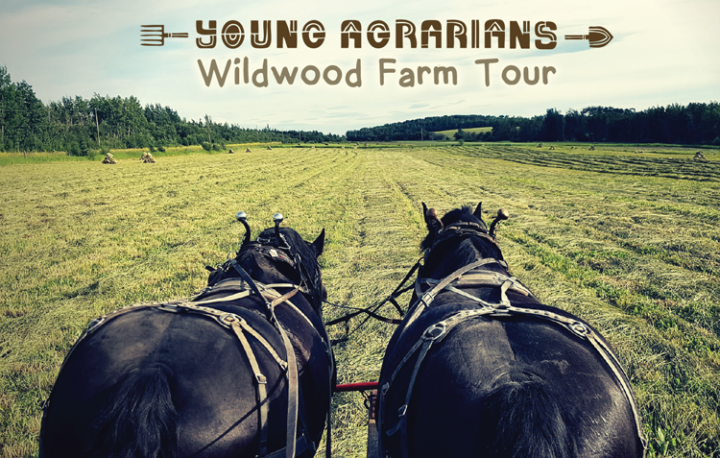 Young-Agrarians-Wildwood-Farm-Tour