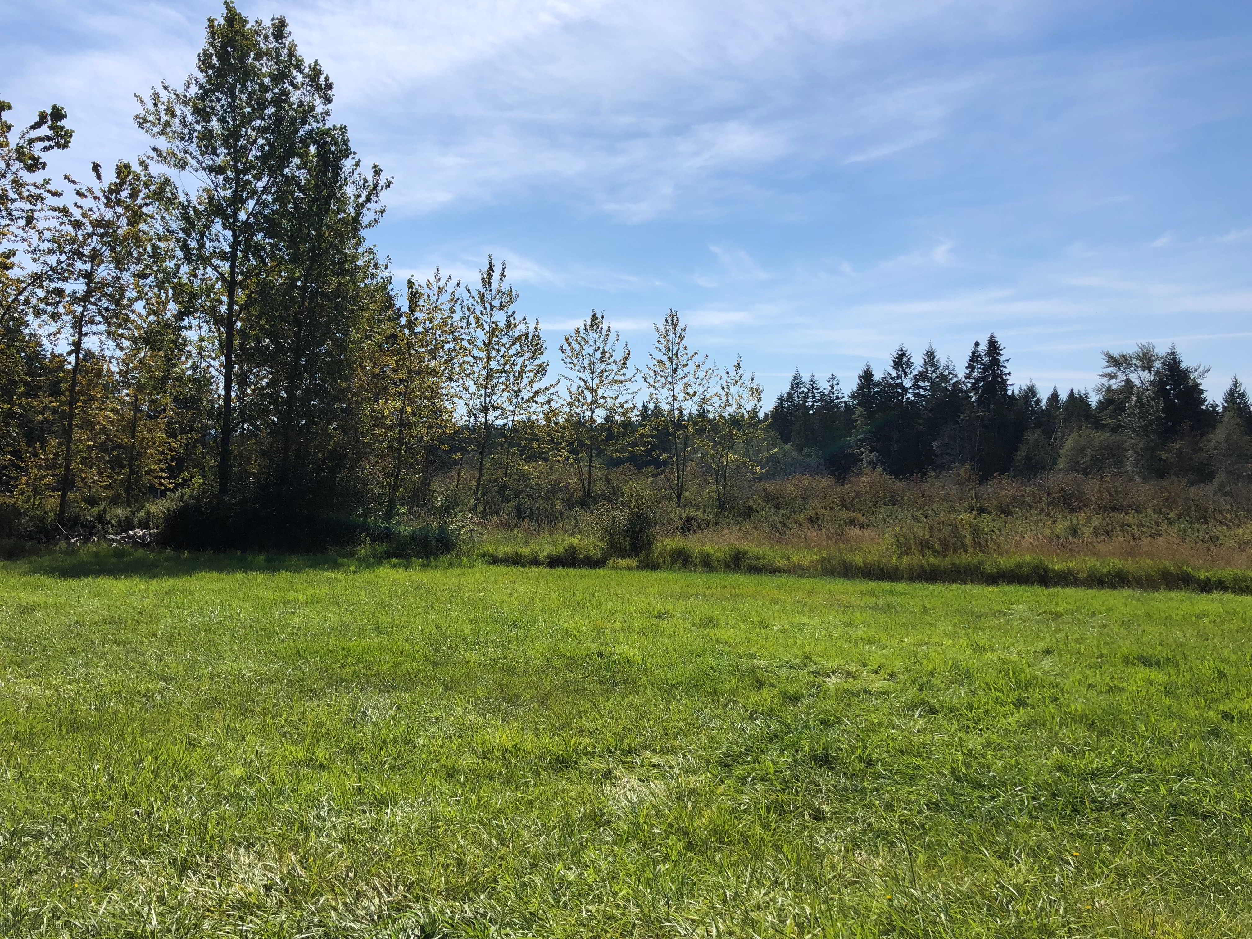 Land Matching opportunity in yellow point