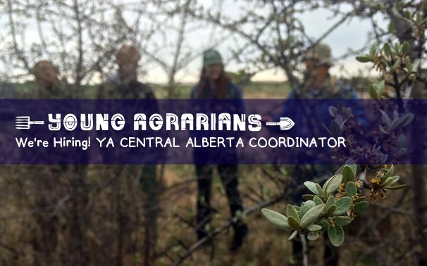 job-young-agrarians-alberta