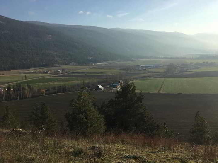 farm-paradise