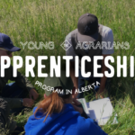 Apply for the 2019 YA Alberta Apprenticeship Program