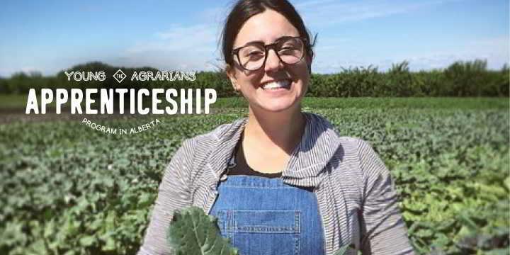 2019-Farm-Apprenticeship-Sundog-Organics