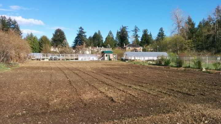 Allen - Haliburton Farm Fields