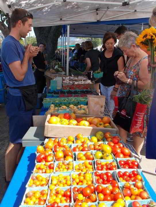 Allen - Moss Street Market Tomatos