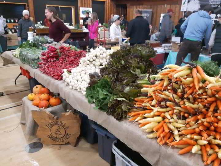 Toadstools - Market Farm Stand