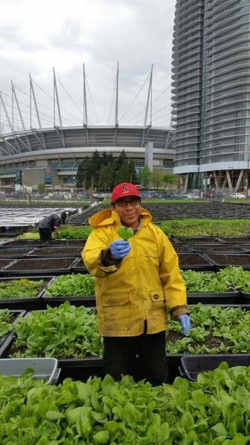 sole food farms