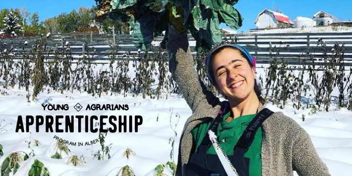 blue mountain farm apprenticeship