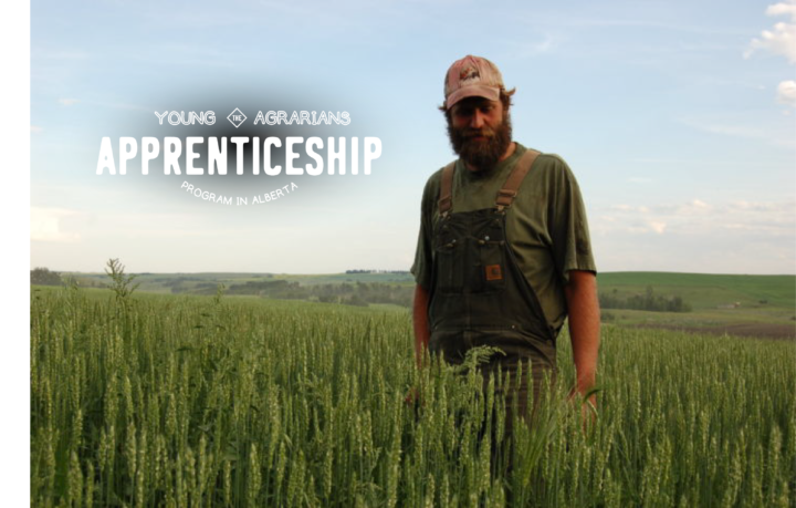 2019-Farm-Apprenticeship-BlueMountain