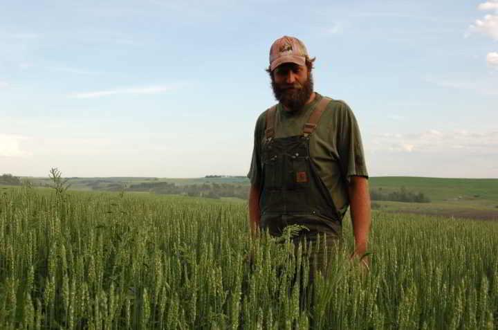 Blue Mountain Biodynamic Farm Kris