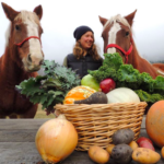 FARM JOB: PEMBERTON, BC – Four Beat Farm, Vegetable Farm Worker